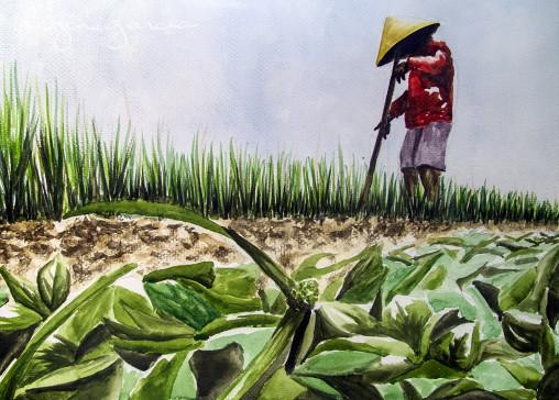rcg artwork farmer