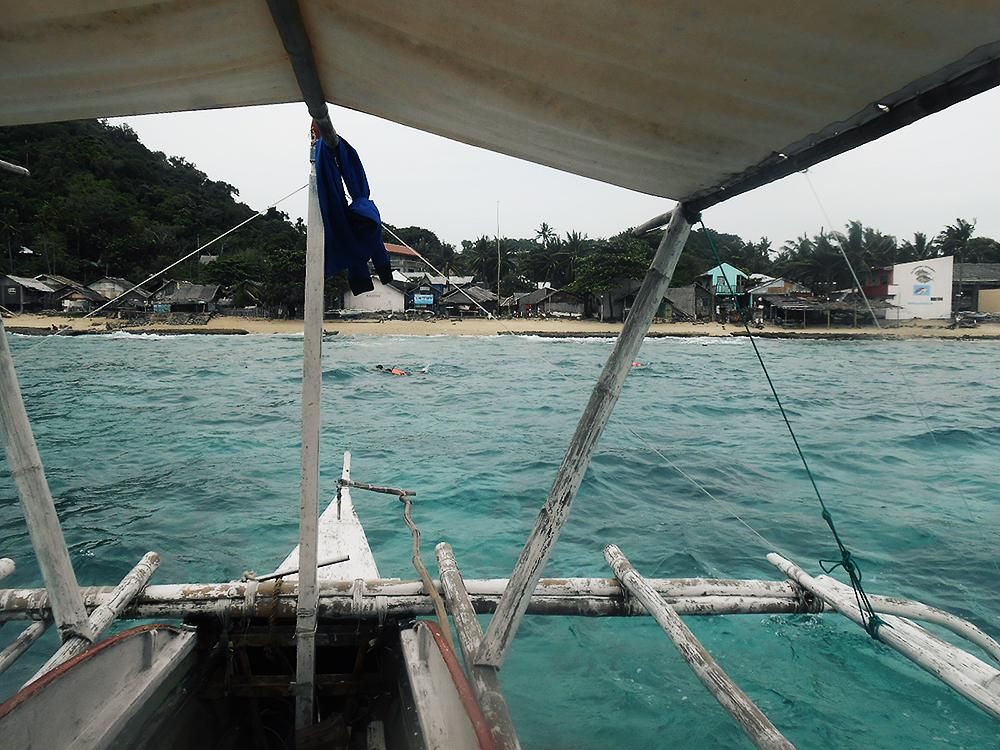 apo island arrival
