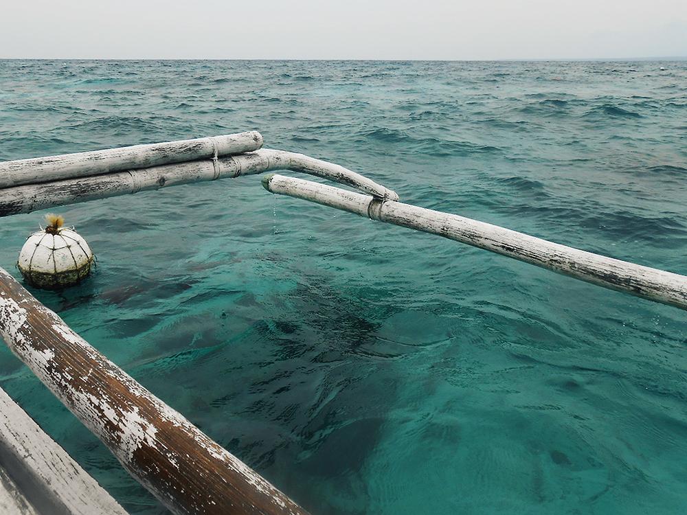 apo island clear water